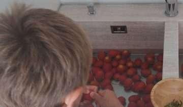 Salsa di pomodoro con l'estrattore: la ricetta di Libera